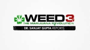 150414135452-weed-3-sanjay-gupta-large-169